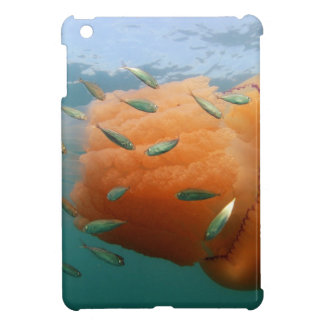 Barrel Jellyfish Swims With Mackerel Case For The iPad Mini