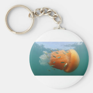Barrel Jellyfish Swims With Mackerel Keychain