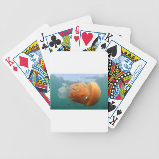 Barrel Jellyfish Swims With Mackerel Poker Deck