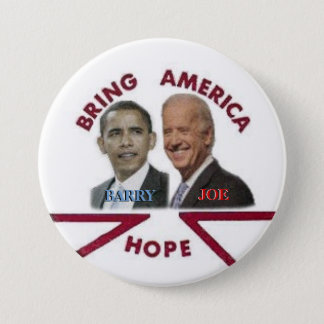 Barry/Joe 3-inch Button