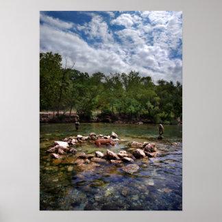 Barton Creek Dog Swimming Hole - Austin Texas Poster