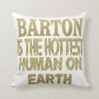 Barton Pillow