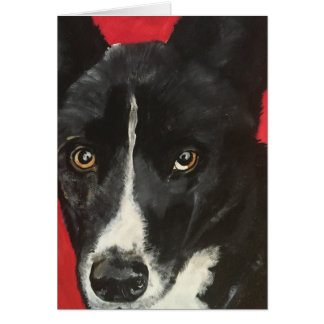 Baru - Pet Portrait Notecard