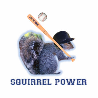 Baseball Squirrel Power Photo Sculpture Magnet