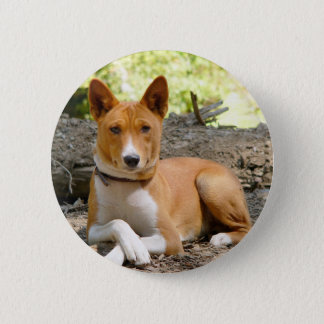 Basenji Dog 2 Inch Round Button