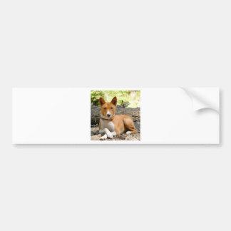 Basenji Dog Bumper Sticker