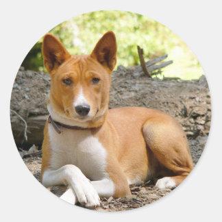 Basenji Dog Classic Round Sticker