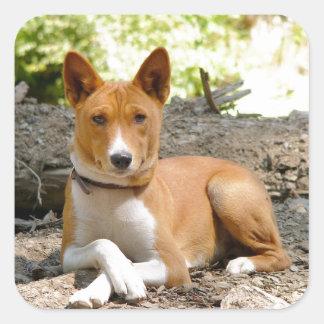 Basenji Dog Square Sticker