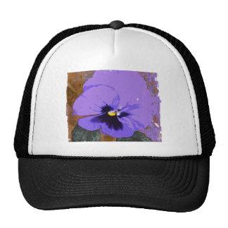 BASHFUL PANSY TRUCKER HAT