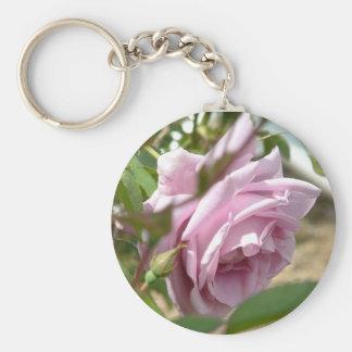 Bashful Pink Rose Keychains