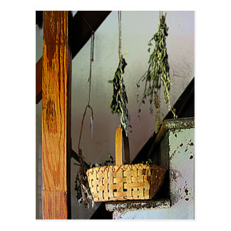 Basket and Drying Herbs Postcard