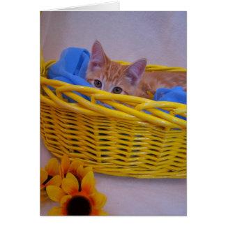 basket cat card