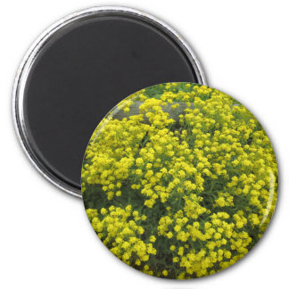 Basket of Gold 2 Inch Round Magnet
