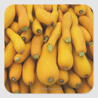Basket of yellow zucchini square sticker