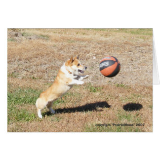 Basketball Corgi Card