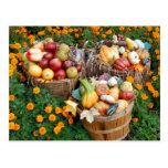 Baskets of Autumn Fruit and Vegetables Post Cards