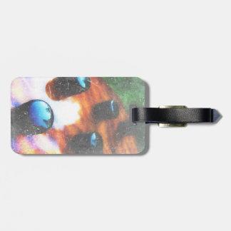 Bass guitar control knobs grunge look tiger eye luggage tag