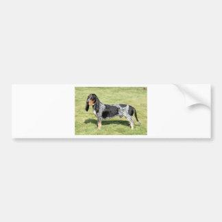 Basset Bleu de Gascogne Dog Bumper Sticker
