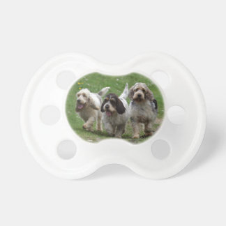 Basset Griffon Vendéen, Grand Dog Pacifier