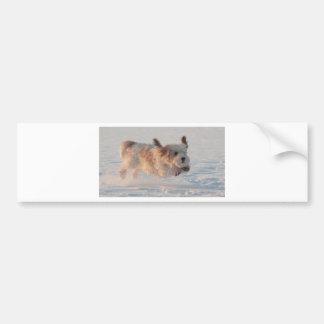 Basset Griffon Vendéen, Grand Puppy Dog Bumper Sticker