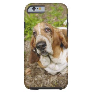 Basset Hound 2 Tough iPhone 6 Case