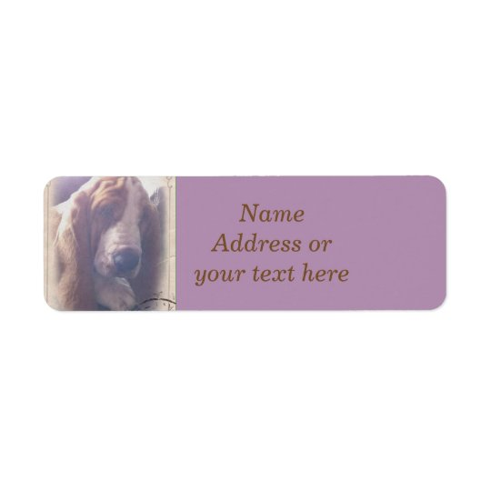 Basset Hound Address Label