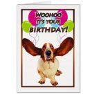 basset hound birthday card - woohoo it's your birt