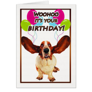 basset hound birthday card - woohoo it's your birt