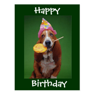 Basset Hound Birthday Lollipop Postcard
