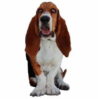 Basset Hound dog portrait photo sculpture