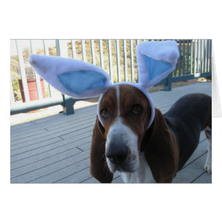 Basset Hound Easter Card