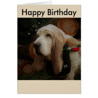 Basset hound Happy Birthday card