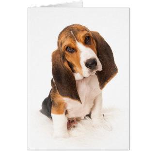 Basset hound hound puppy card