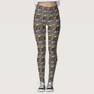 Basset hound leggings