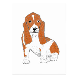 Basset Hound multiple Products Postcard