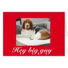 Basset hound on funny Valentine's Day card