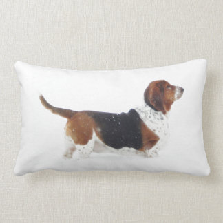 Basset Hound on Lumbar Pillow