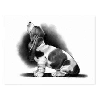 BASSET HOUND: PENCIL REALISM: PUPPY POSTCARD