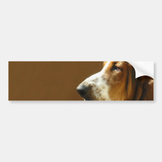 Basset Hound Photo Bumper Sticker