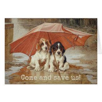 Basset hound puppies under umbrella Trood Card
