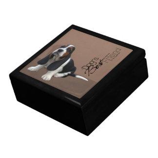 Basset Hound Puppy Gift Box