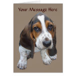 Basset Hound Puppy Greeting Card