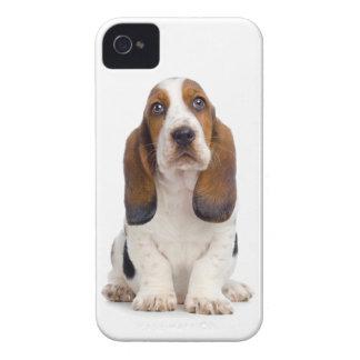 Basset Hound Puppy iPhone 4/4S Case