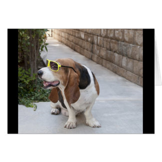 Basset Hound with Sunglasses Note Card