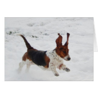 """Basset Hounds in the Wild"" series note cards"