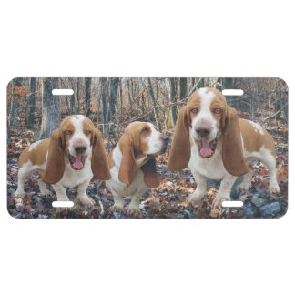 Basset Hounds In the Woods Basset Hound License Plate