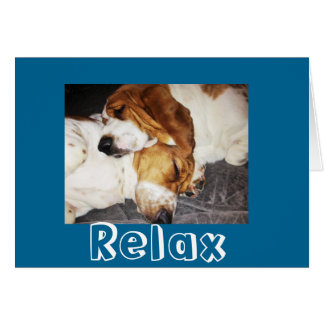 Basset Hounds sleeping greeting card message Relax