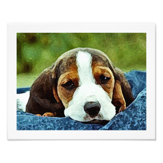 Basset Puppy Resting - Brown Black and White Photo Print