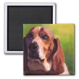 bassethound square magnet