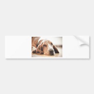 Bassett Hound Puppy Dog Bumper Sticker